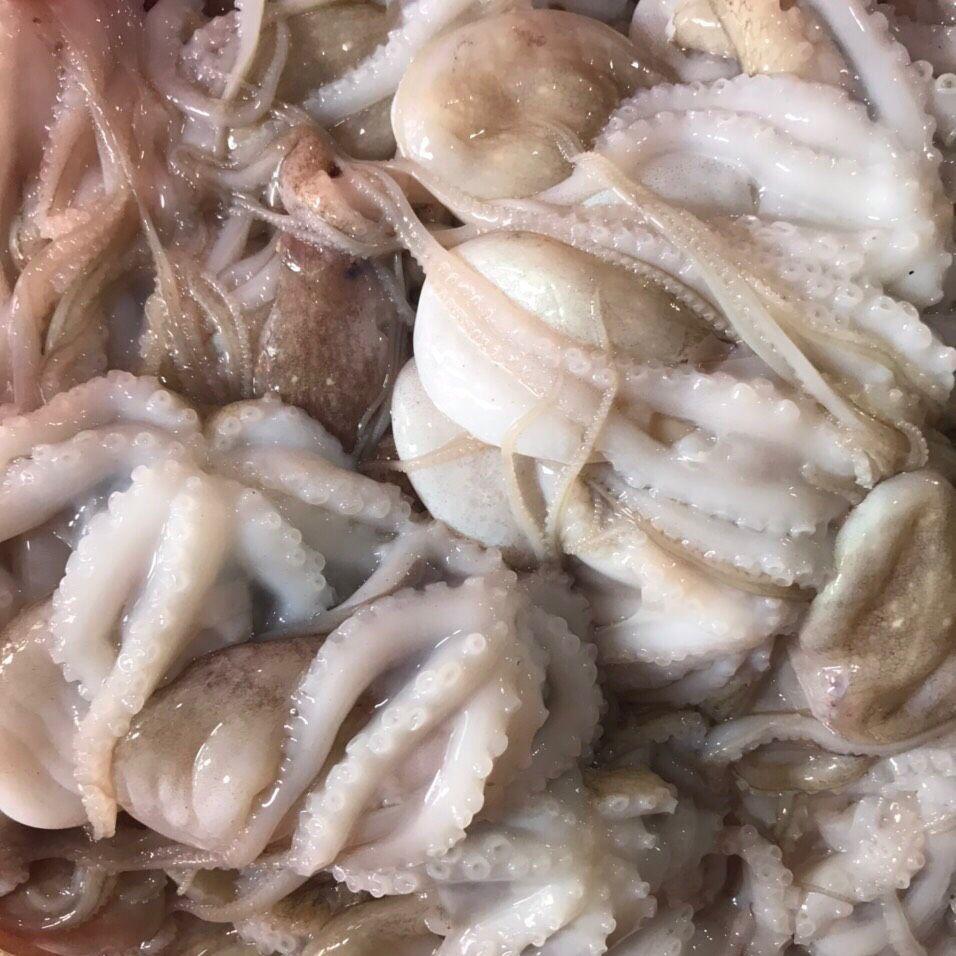 sơ chế bạch tuộc
