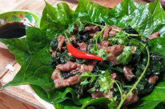 Tổng hợp Các món rau xào với thịt bò Dễ làm mà Ngon miệng