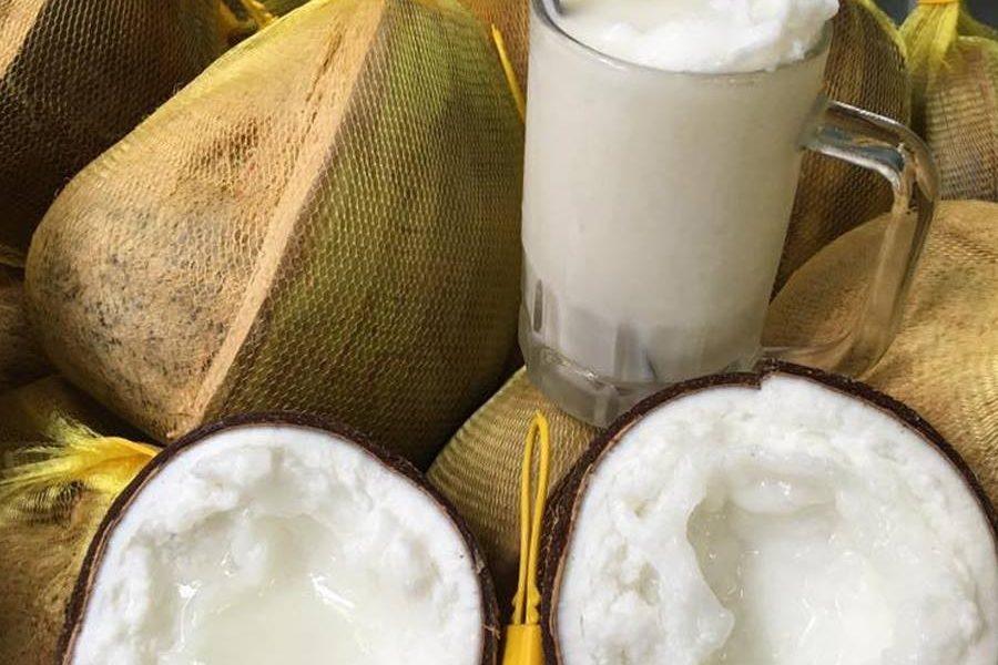 cách làm sinh tố dừa sáp