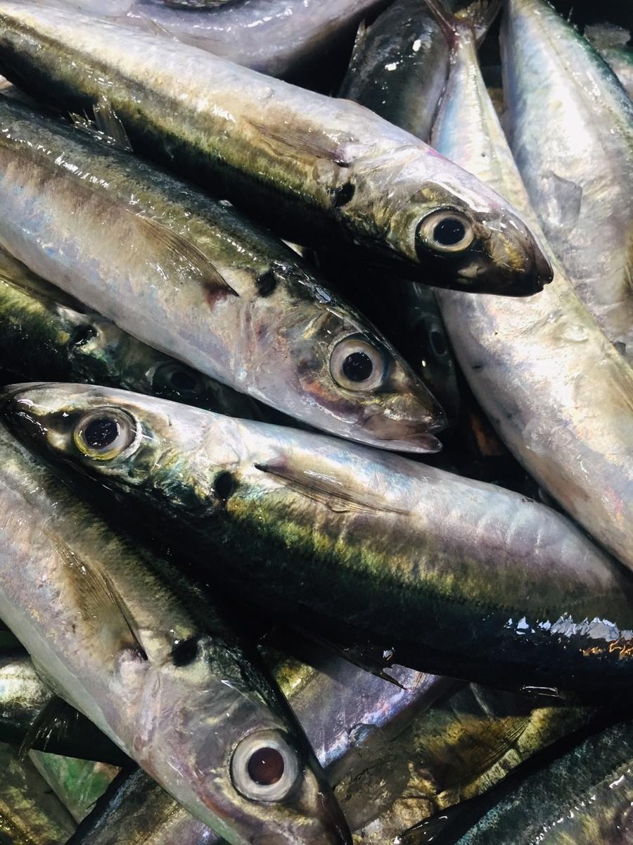 chọn cá nục ngon